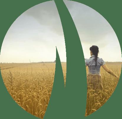 Lauksaimniecības zemes cenas pārdošana 2021